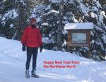 Winter-Nerd-New-Years-Greetings